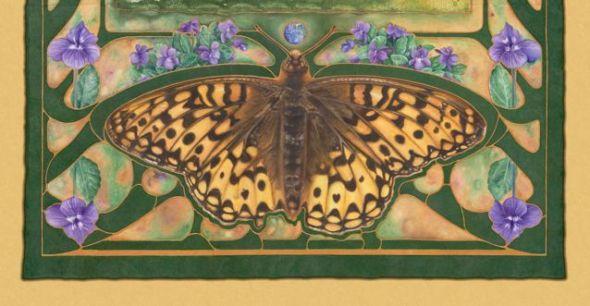 A Delicate Balance - Oregon Silverspot Butterfly