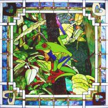 Frog-Window-Complete